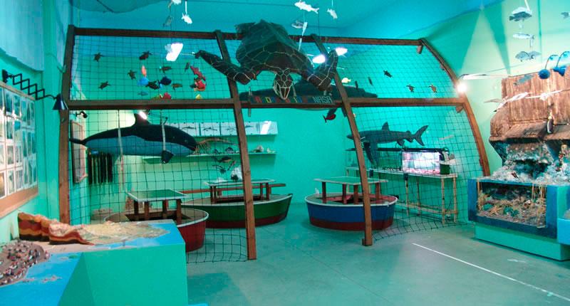 Foto del aula activa del mar
