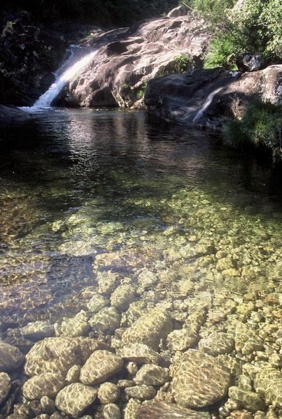 Foto de las Piscinas Naturales del Río Pedras